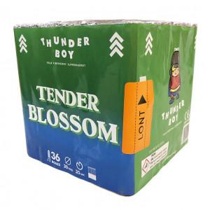Tender Blossom 36  βολές