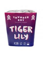 Πακέτο με πυροτεχνήματα Thunderboy  Tiger Lilly  16 βολές