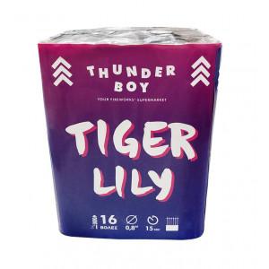 Πακέτο με πυροτεχνήματα Thunderboy Tiger Holly 16 βολές