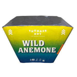 Πακέτο με πυροτεχνήματα Wild Anemone 48  βολές